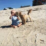 Ο εγγονός της Άννας Βίσση στην παραλία! (φωτό)