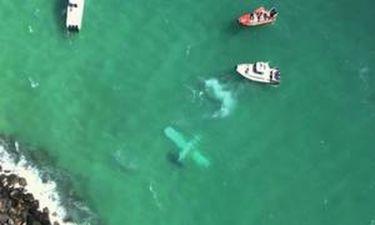 Αεροσκάφος στη θάλασσα του Μαϊάμι