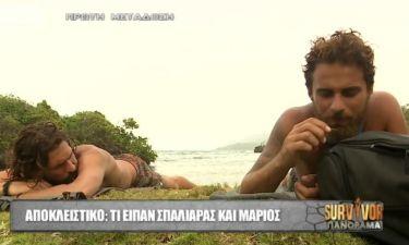 Survivor Πανόραμα: Σπαλιάρας-Μάριος: Δείτε πως σχολιάζουν την ένταση με τους Διάσημους