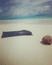 Γιάννης Δρυμωνάκος: Ένας πρώην Survivor για… surf στην Καραΐβική