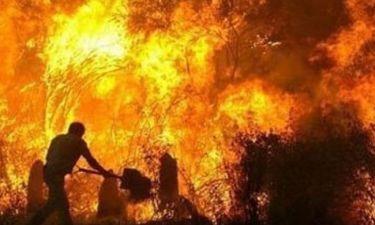 Ελένη Τσολάκη: «Δεν υπάρχουν λέξεις, λόγια, φωνές για να εξηγήσουν τη τραγωδία»