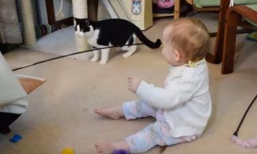 Τρελό γέλιο! Δείτε πώς ένα μωρό μπορεί να τρελάνει ένα γατί!
