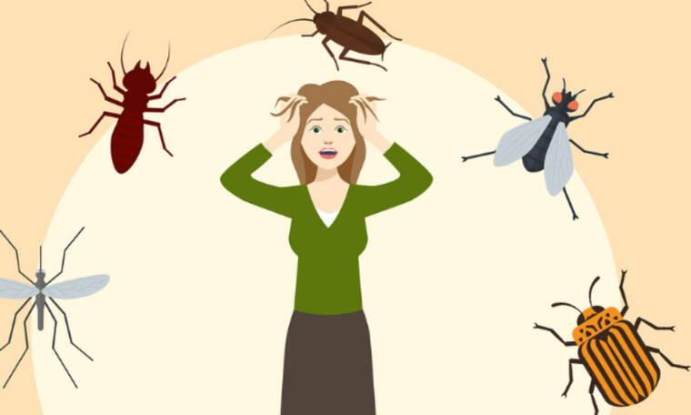 Ποιο ζώδιο αν δει κατσαρίδα στο σπίτι του, αλλάζει μέχρι και χώρα; Ψήφισέ το!