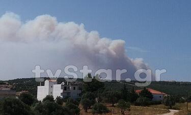 Φωτιά ΤΩΡΑ: Οι πρώτες εικόνες από τη μεγάλη πυρκαγιά στην Εύβοια